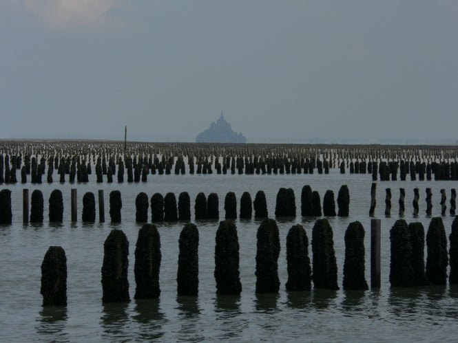 Le Viviere mussels with Mont St Michel in background